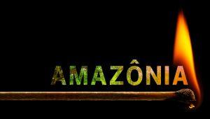 queimadas na amazonia