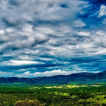 reserva particular do patrimonio natural